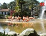 32_zoo-at-palais-sur-mer