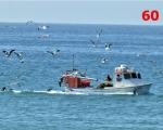 60_fishing-boat-in-quatiera-portugal