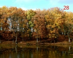 28-autumn-etang-de-bois-pouvreau